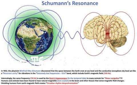 Jouw Lichaam (Hart en Hersenen) resoneren met de Schumann Resonances Voor uitleg over de Schumann Resonances en haar vibraties kun je de link boven dit plaatje volgen