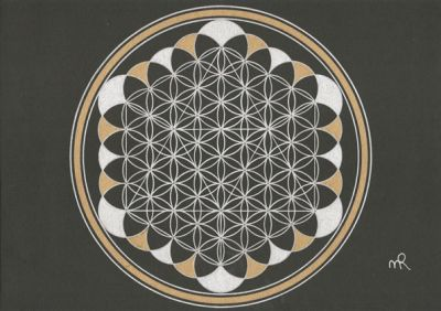 Flower of Life completed - Adult consciousness - VolwassenbewustZijn
