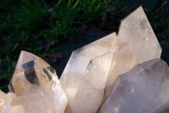 Arkansas Cristal  2006