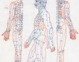 Acupunctuur- en Acupressuur punten